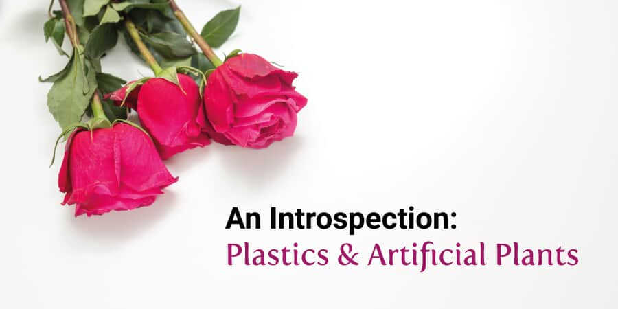 An Introspection: Plastics & Artificial Plants